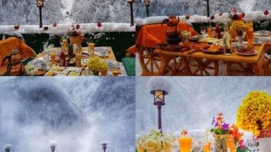 Photo of مطاعم ايدر الرائعة .. طعم رائع و طبيعة و لا اجمل
